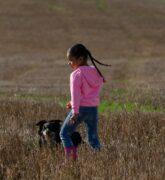 Importancia y beneficios de las mascotas en los niños